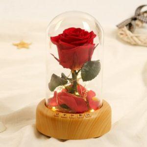 Flower Bluetooth Glass Dome