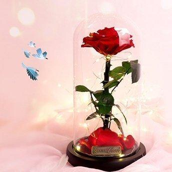 Everlasting Flower Bluetooth Glass Dome