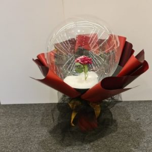 Red Rose Snow Balloon
