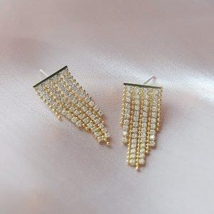 Zircon Tassel Earrings Long